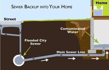 sewer backup Kitchener-Waterloo